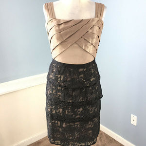Max and Cleo BCBG S 6 Brown Black Tiered lace